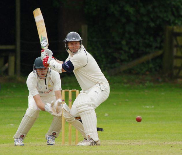 cricket-724617_1280